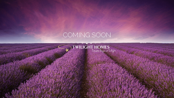 Coming Soon - Lavender Fields